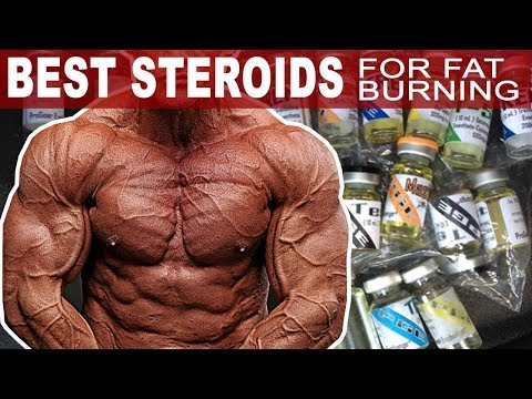 De fapt pierdeți celulele grase