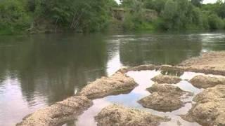 Рыбалка на реке алей алтайский край