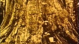 Eadweard Muybridge - Murder, Acquittal and Paternity