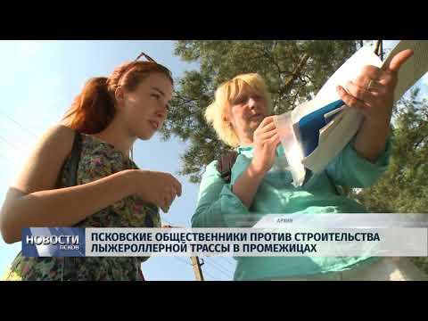 Новости Псков 11.10.2018 # Общественники против строительства лыжероллерной трассы в Промежицах