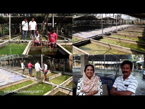 Monopriya Fish Farming in India - смотреть онлайн на Hah Life