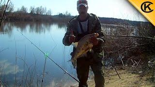 Ловля донками на озере
