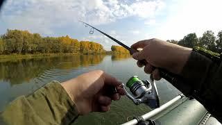 Рыбалка на дону в россошанском районе