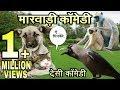 देसी जानवरों की मारवाड़ी काॅमेडी Desi Animals Talking Funny Marwadi Comedy fun with singh