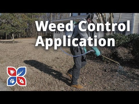 Do My Own Lawn Care - Episode 5 - Weed Control Application