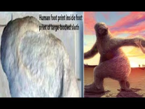The ancient footprints that reveal how humans stalked giant seven foot SLOTHS 11,000 years ago