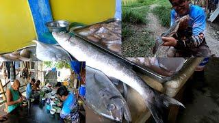 Sinigang na Baracuda , Masarap kaya?  | Update sa Hito..