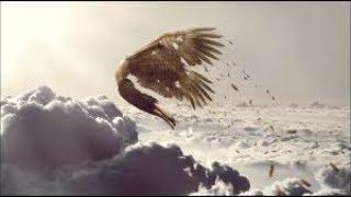 Story Time : Pandora; Daedalus & Icarus