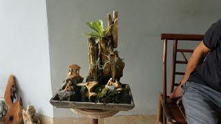 SH.2033.Tiểu Cảnh 4.5tr Và Nhiều Bonsai Mini đẹp được Báo Giá Tại Vườn Nguyễn Huynh.Văn Giang