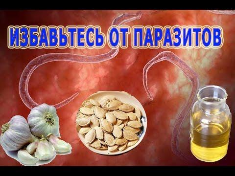 , title : '★Избавьтесь от ПАРАЗИТОВ при помощи чеснока и тыквенных семян. ГЛИСТЫ выйдут от касторового масла.