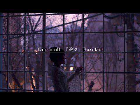 2019.1.25「遥か-Haruka-」MV公開