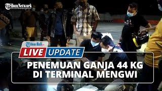 Detik-detik Polisi Amankan 44 Paket Ganja di Badung, Dimasukkan Karung dan Diangkut Truk Ekspedisi