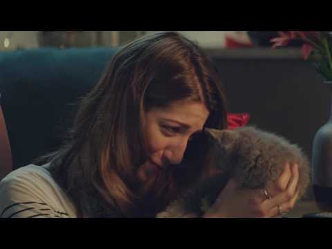 McVitie's Chocolate Digestives Nibbles Commercial