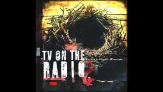 "TV ON THE RADIO : ""Return to Cookie Mountain"""