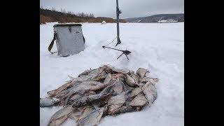 Отчет о рыбалке на белгородском водохранилище