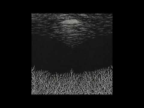 BISMUTH - The Slow Dying Of The Great Barrier Reef [FULL ALBUM] 2018