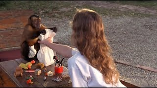 小女孩收养一只猴子,没想到它是一个神偷,每天偷回大量金银珠宝