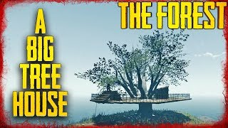 HOW TO BUILD HOUSES IN THE BIG TREES | The Forest