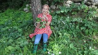 מסיירים עם שרית ברנס – סדרת סרטוני רשת על אהבת הארץ ומורשת. על הרקפת והפקעת- חלק ב