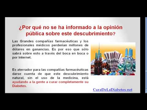 Tratamiento y comida diabetes tipo 2