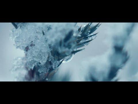 Guiano - 凍えそうだ (feat.flower)