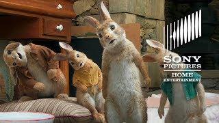 PETER RABBIT – On Blu-ray Combo Pack & Digital