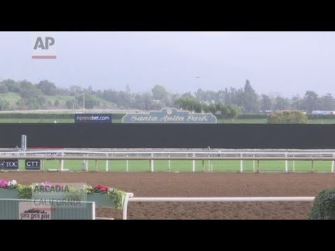 The California Horse Racing Board voted Thursday to severely limit the use of whips on horses in racing statewide following the deaths of 22 horses at the Santa Anita race track. (March 28)