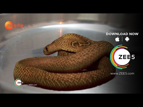 Azhagiya Tamil Magal | Best Scene | Ep - 219 | Sheela Rajkumar, Puvi, Subalakshmi Rangan | Zee Tamil