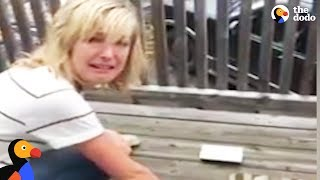 Download Youtube: Crying Woman Rescues Mouse From Glue Trap   The Dodo