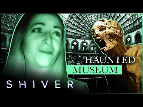 A Supernatural Night At The Museum