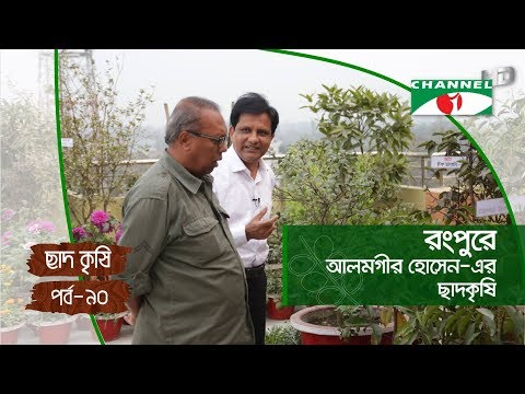 Rooftop farming | EPISODE 90 | HD | Shykh Seraj | Channel i | Roof Gardening | ছাদকৃষি |