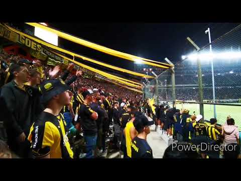 """""""Hinchada De Peñarol Vs. Belgrano / Amistoso Internacional 2020 / Campeon Del Siglo"""" Barra: Barra Amsterdam • Club: Peñarol"""