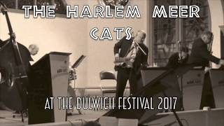 Sylvie's Place proudly presents The Harlem Meer Cats