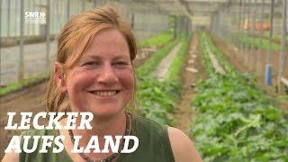 Nach Baden zu Helga Decker | Sommerreise - Staffel 4 - Folge 1 | SWR Lecker aufs Land