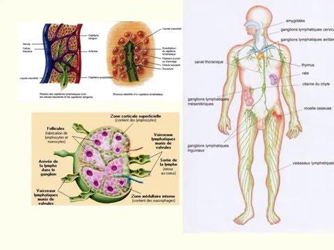 Bewertungen der medikamentösen Behandlung von Prostatitis