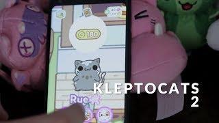 Kleptocats 2: regresan los gatitos tiernos de MÉXICO para el mundo