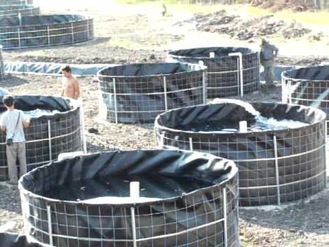 Geomembrana precio videos videos relacionados con for Geomembrana para estanques de agua