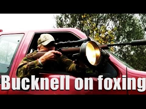 Foxing tips with Robert Bucknell