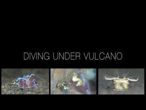 Diving under Vulcano, Sangihe,Indonesien