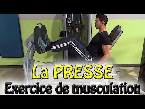 Les bancs pour les muscles du dos starter