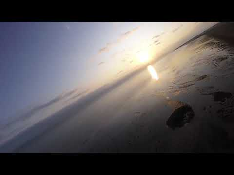 xuav-snowgoose-at-sunrise