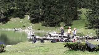 preview picture of video 'Basa de la Mora (Ibón de Plan)'