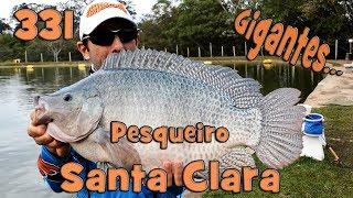 Programa Fishingtur na TV 331 - Pesqueiro Santa Clara