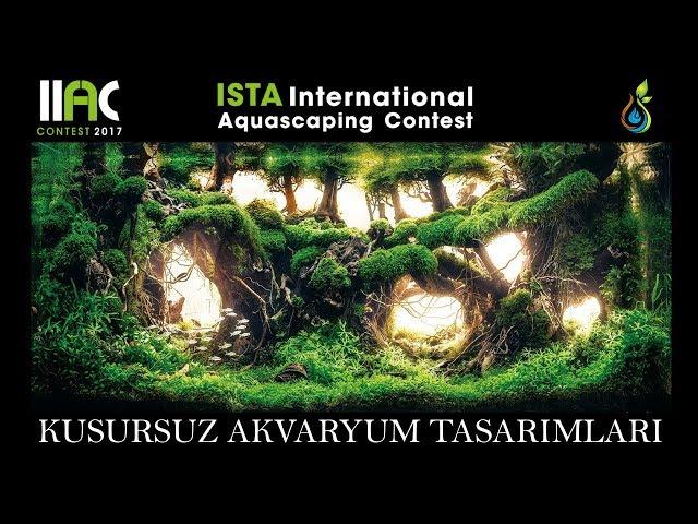 Kusursuz Akvaryum Tasarımları! - IIAC - Ista International Aquascape Contest '17 TOP 50