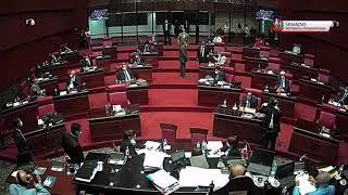 Senado aprueba estado de emergencia por 45 días para lucha contra COVID-19