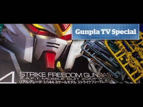 Gunpla TV - Special Edition - 1/144 RG ZGMF-X20A Strike Freedom Gundam - Hlj.com