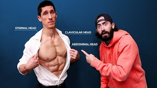 The ONLY 3 Chest Exercises You Need (CHISELED PECS!)