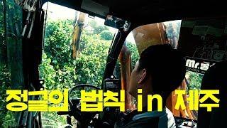 굴삭기 정글 탐험 야무지게 하고 왔습니다 (Feat.나방)