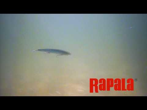 Воблер RAPALA MAX RAP MXR15-FANC фото №2