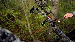 When to Hunt Whitetails In The Morning